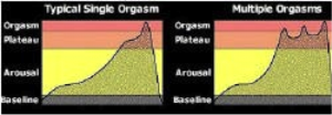 Diagrama de Ejaculação
