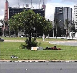 Casal Brasilia
